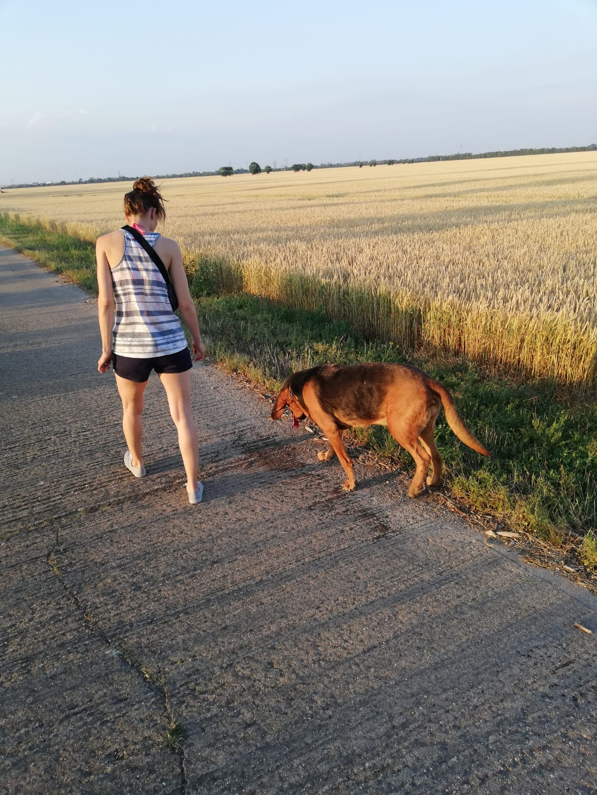 Personal Training Outdoor Maria Bartlitz